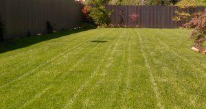 vrtnarske storitve - zračenje trave